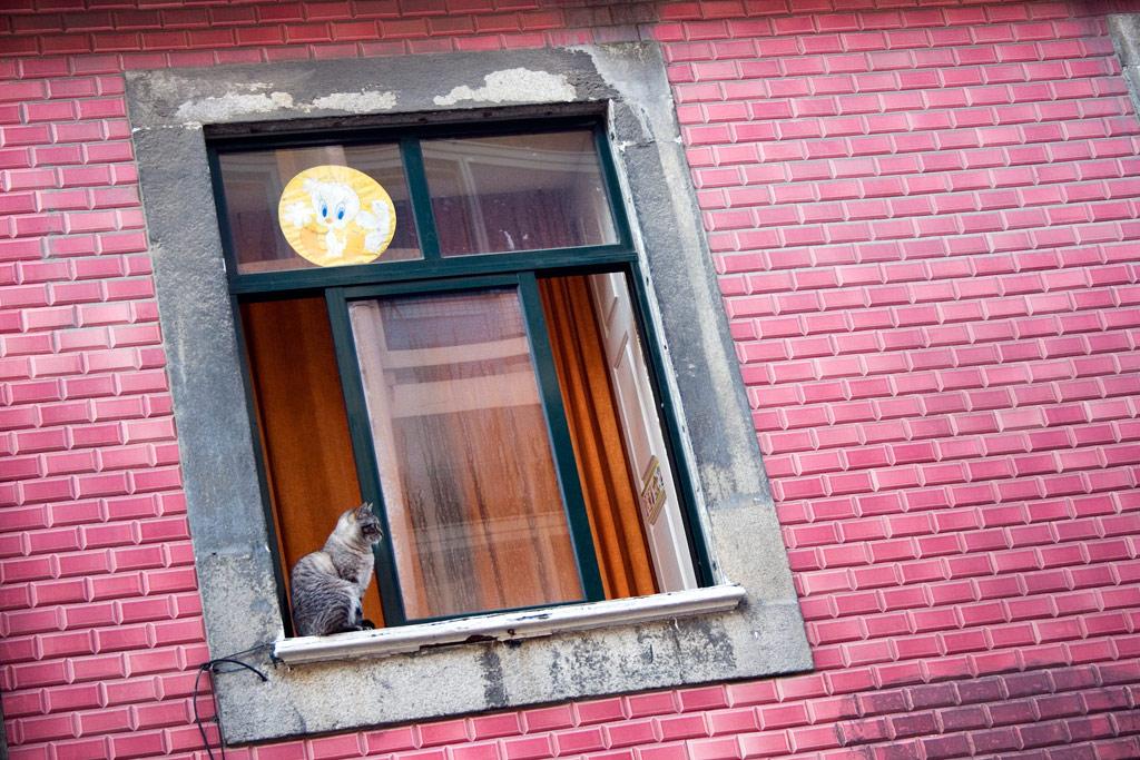 Random Porto #16