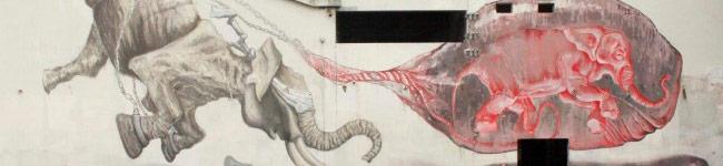 Regg & Violant in Cabo Ruivo