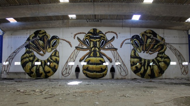 violant_bees